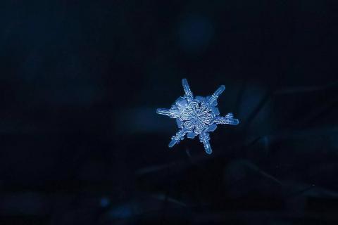 20170103_snowflake_5.jpg