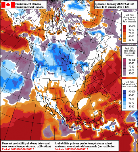 2019012812_054@007_E1_north@america_I_NAEFS@TEMPERATURE_anomaly@probability@combined@week2_186.png
