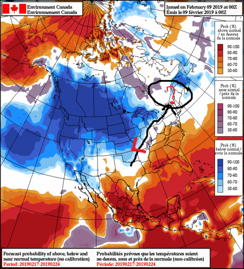 2019020900_054@007_E1_north@america_I_NAEFS@TEMPERATURE_anomaly@probability@combined@week2_198.png