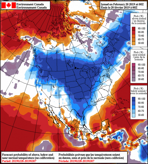 2019022000_054@007_E1_north@america_I_NAEFS@TEMPERATURE_anomaly@probability@combined@week2_198.png