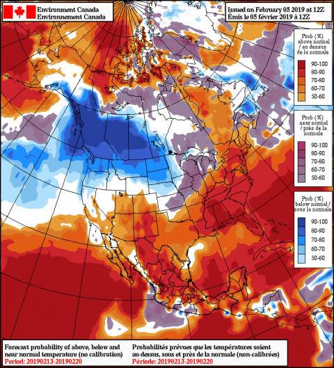 2019020512_054@007_E1_north@america_I_NAEFS@TEMPERATURE_anomaly@probability@combined@week2_186.png