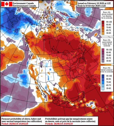 2020021012_054@007_E1_north@america_I_NAEFS@TEMPERATURE_anomaly@probability@combined@week2_186.png
